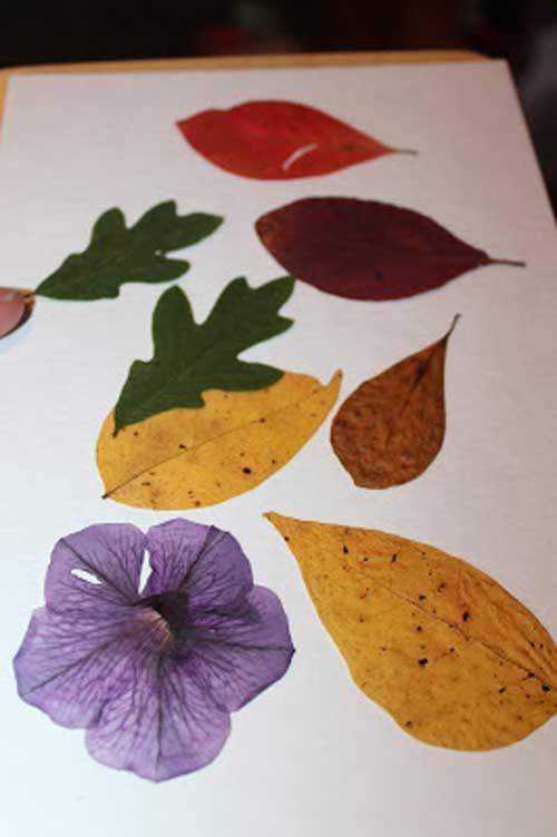 395 Assorted Fall Leaves for Pumpkin Julie Heyer CS