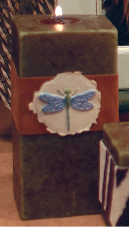 Dragonfly paper cast project